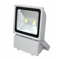 Светодиодный прожектор 2*50 Вт NW