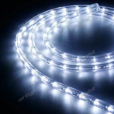 Образец Дюралайт ARD-REG-FLASH Cool (220V, 36 LED/m, 2m), Arlight, 026671