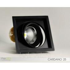 Карданный светильник FLED-DL 002-25 (КАРДАНО-25)