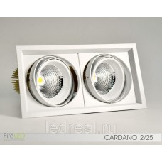 Карданный светильник FLED-DL 002-25x2 (КАРДАНО-25х2)