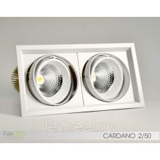 Карданный светильник FLED-DL 002-50x2 (КАРДАНО-50х2)
