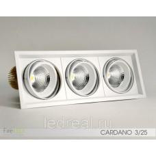 Карданный светильник FLED-DL 002-25x3 (КАРДАНО-25х3)