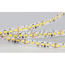 Светодиодная лента IC2-5000 24V White 4xH (5630, 600 LED, LUX качества), Arlight, 019684 , бобина 5 метров